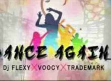 DJ Flexy x Trademark x Voocy Dance Again mp3 download