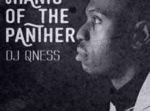 DJ Qness Bambelela ft. Zizipho Ngwenya mp3 download