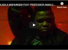 Dladla Mshunqisi Amalukuluku Video ft. Professor mp4 download