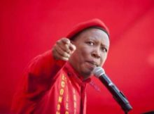 Julius Malema Asks Cyril Ramaphosa To Go Back To business