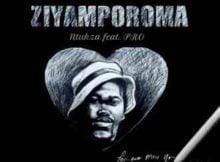Ntukza Ziyamporoma Ft. PRO mp3 download