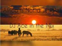 DJ Ace Africa Is Not A Jungle Mix mp3 download mixtape