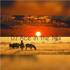 DJ Ace Africa Is Not A Jungle Mix mp3 download mixtape