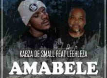 Kabza De Small Amabele Shaya Remix Video ft. Leehleza mp4 download free