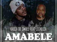 Kabza De Small Amabele Shaya Remix Video ft. Leehleza mp4 download free