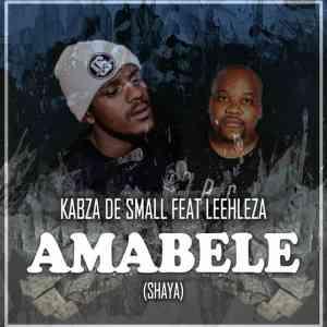 Kabza De Small Leehleza Shaya Remix Video ft. Amabele mp4 download free