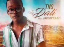 TNS My Dali ft. Indlovukazi mp3 download free datafilehost