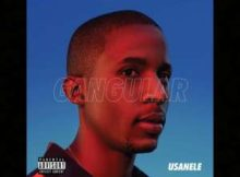 uSanele Skellies Ft. 45 Degrees & Windows 2000 mp3 download free