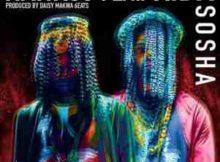 Nankoo Sosha Ft. Kid X mp3 download free datafilehost full music audio fakaza hiphopza