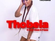 Nichume Thobela ft. Mobi Dixon & T-Love mp3 download free datafilehost full music audio song fakaza hiphopza hitvibes afro house king flexyjam sahiphop 2019 original feat