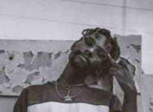 Ranks Nae Nae ft. Emtee & Sjava mp3 download feat fakaza hiphopza flexyjam