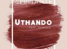 Spumante Uthando Ft. Dumisile mp3 download feat free datafilehost fakaza hitvibes flexyjam afro house king
