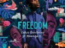 Zakes Bantwini Freedom ft. Moonga K mp3 download free datafilehost music audio song fakaza hiphopza afro house king zamusic flexyjam feat