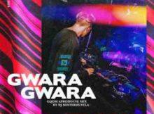 DJ Misterhustla Gwara Gwara (Gqom afro house Mix) mp3 download free datafilehost full audio music song 2019 gqom fakaza hiphopza hitvibes afro house king