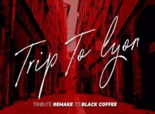 Echo Deep Trip To Lyon Tribute Remake To Black Coffee mp3 download fakaza datafilehost