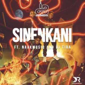 Distruction Boyz Sinenkani ft. DJ Tira & NaakMusiQ mp3 download