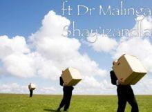 Havoc Fam Shay'izandla ft. Dr Malinga mp3 download