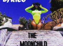 DJ Rico – The Moon Child mp3 download