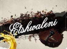 Dj RedCarpet Etshwaleni ft. Juizee SA mp3 download