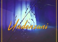 Dlala lazz Undenzani ft. Peace mp3 download