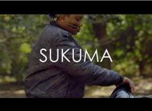 Tipcee Sukuma Video Ft Dladla Mshunqisi mp4 download