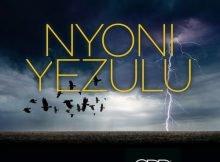 Zakes Bantwini & Leroy Styles Nyoni Yezulu (Original Mix) mp3 download