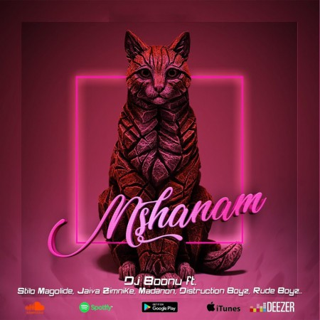 DJ Boonu - Mshanam ft. Stilo Magolide, Distruction Boyz, Madanon, Rude Boyz & Jaiva Zimnike mp3 download gqom free song