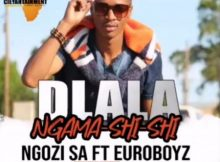 Ngozi SA - Dlala Ngama Shi Shi ft. Euroboyz mp3 download
