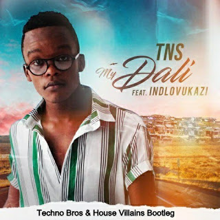 TNS ft. Indlovukazi - My Dali (Techno Bros & House Villains Bootleg remix mp3 download