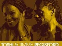 Toshi, Timmy Regisford & Mr Joe – Revolution Remix mp3 download