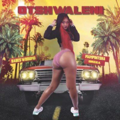 Babes Wodumo – Otshwaleni ft. Mampintsha & Drega mp3 download