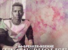 DJ Speaker Ngekhe - Ungay'Pholisi ft. Melinda, Mambojie & Strongnation mp3 download