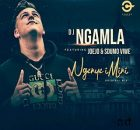 DJ Ngamla – Ngenye Imini Ft. Sdumo Viwe & Joejo mp3 free download