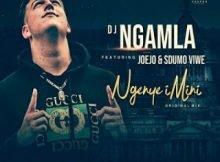 DJ Ngamla – Ngenye Imini Ft. Sdumo Viwe & Joejo mp3 free download