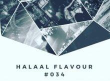 Entity MusiQ & Lil'Mo - Halaal Flavor #034 vol 34 mix mixtape mp3 free download