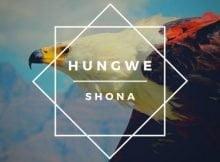 Shona SA – Hungwe Album zip mp3 download