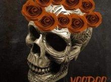Afro Warriors & Tefo Foxx - Voodoo mp3 download