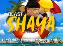 Beast – Shaya ft Mondli Ngcobo & Spiritbanger mp3 download