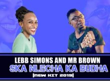 Lebb Simons & Mr Brown – Ska Nlecha Ka Budha mp3 download