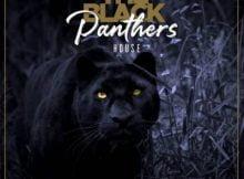 Pro-Tee & Biblos – Black Panther mp3 download