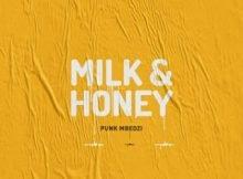 Punk Mbedzi - Milk & Honey ft. Fka Mash mp3 download