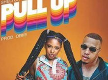 Shelton Forbez – Pull Up ft. Gigi Lamayne mp3 download