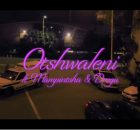 Babes Wodumo – Otshwaleni Video ft. Mampintsha & Drega mp4 official download