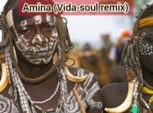 Jaguar Paw ft. Idd Aziz - Amina (Vida Soul Remix) mp3 download