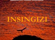 Lizwi – Insingizi (Afronerd Remake) remix mp3 free download