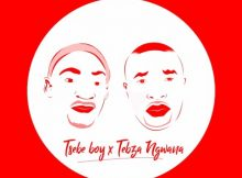 Tsebe Boy & Tebza Ngwana - Sgubhu sa Pitori Vol 1 ft. Fearless Elements mp3 download mixtape