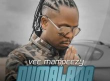 Vee Mampeezy – Dumalana ft. Dr Tawanda mp3 download