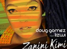Doug Gomez Ft. Lizwi - Zanini Kimi (HyperSOUL-X Remix) mp3 download