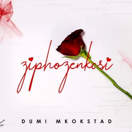 Dumi Mkokstad – Ziphozenkosi mp3 download