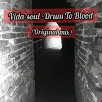 Vida-soul - Drum To Blood (Original Mix) mp3 download